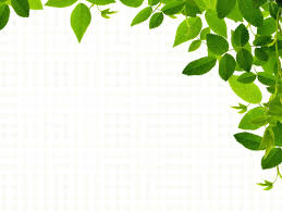 Real Leaves Backgrounds Nature Templates Free Ppt Grounds And