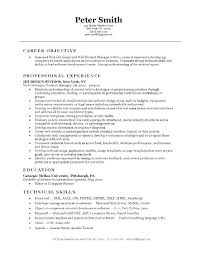 Object Of Resume Magnificent Resumer Examples How To Do A Resume Examples Web Developer Resume