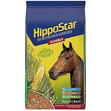 Paarden te koop - sporthorses