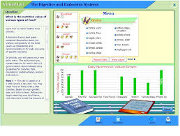 the digestive and endocrine systems lab my virtual daily menu