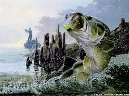 cool fishing wallpapers 353581