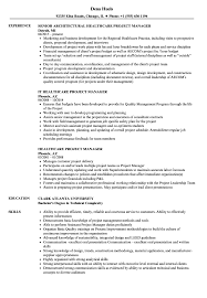 Healthcare Project Manager Resume Samples | Velvet Jobs