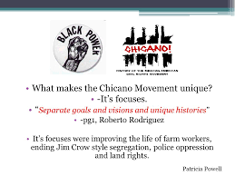 "the origins and history of the chicano movement"" ppt video  what makes the chicano movement unique it s focuses"