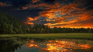 outdoor woods backgrounds. Modren Backgrounds Outdoor Woods Backgrounds Backgrounds R Throughout Outdoor Woods Backgrounds