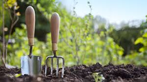 warmer weather doesn t necessarily mean it s the right time to get  warmer weather doesn t necessarily mean it s the right time to get started on the garden