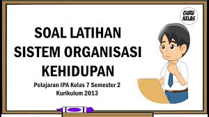 Soal dan kunci jawaban ipa kelas 8 semester 1. Soal Latihan Sistem Organisasi Kehidupan Pelajaran Ipa Kelas 7 Semester 2 Kurikulum 2013 Youtube