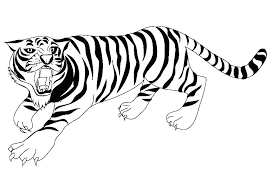Tiger Coloring Pictures F8331 Coloring Pages Of Tigers 2 Daniel