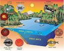 Contoh Unsur Unsur Lingkungan Hidup