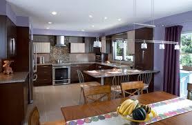Innovative Kitchen Designs Kitchen Designs Pictures Shoisecom