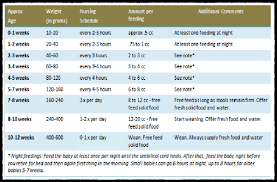 Infant Baby Feeding Chart Schedule And Guide Hercottage