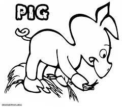 Small Picture Cute Baby Pig Coloring Pages Coloring Pages baby pig coloring