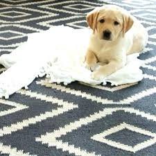 pet approved rugs west elm rug kilim kite round