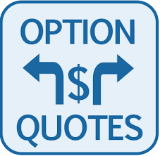 Option Quotes Interesting Optionquotes Cost Management Solutions