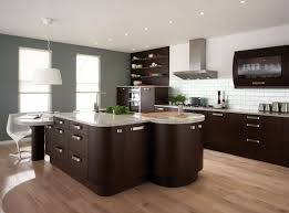 contemporary kitchen wall colors with dark cabinets