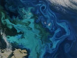 Interactive Online Maps Make Satellite Ocean Data Accessible