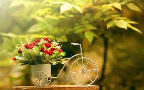 beautiful flower pots bicycle design garden