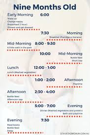 Handy Printable To Help With Routines For A Nine Month Old