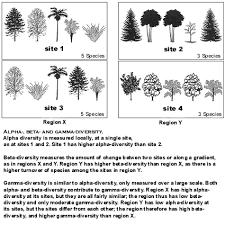 Species Diversity Definition Components Of Biodiversity