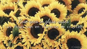 shannon purser sunflower letra inglés español