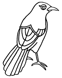 Small Picture Texas Mockingbird Has Beautiful Eye Coloring Pages Color Luna