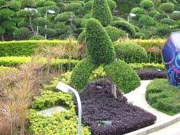 Small Picture Landscape Garden Design Ideas Kerala The Garden Inspirations