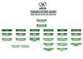 Organization Chart Hablem