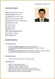 ... English Cv Template Sample Sample Resume Service English Resume Template