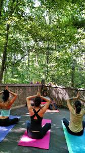 yoga in the forest at shoji retreats in asheville nc