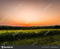 tall grass field sunset. Gorgeous Colorful Orange Sky Sunset Over A Rural Farm Or Country Scene In Galena Illinois With Barbed Wire Fence And Tall Grass Foreground Soybean Field L