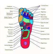 Pressure Points On Your Left Foot Foot Reflexology