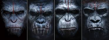 Image result for planet of the apes