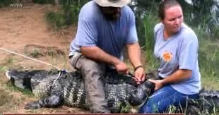 2017 Alligator Price Chart Florida Florida Alligator Attack Victim Shizuka Matsukis