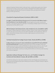 Examples Of A Summary For A Resume Gorgeous Software For Resumes Inspiration Resume Summary Examples For