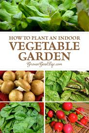growing herbs and vegetables indoors is a great way to supplement your t with fresh
