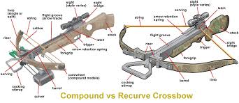 Compound Vs Recurve Crossbow Archery Bows Equipment