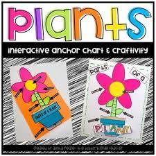 Plants Anchor Chart Crafitivity