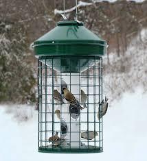 squirrel resistant caged bird feeder