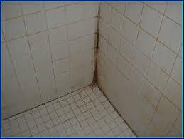 fullsize of chic cleaner ideas bathroom tiles bathroom tiles cleaner how to acid wash bathroom tiledesigns