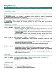 Resume Template For It Professional