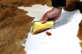 cleaning cowhide rug wonderful cowhide rug cleaning 7 how do you clean cowhide rugs rug designs