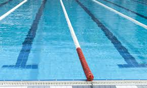 Image result for dovercourt swim to survive