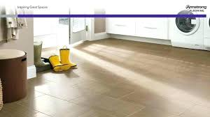 tile cleaning armstrong alterna reviews
