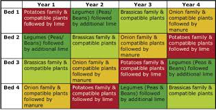 The Importance Of Roation For Vegetable Crops The Basis Of