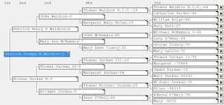 X Dna Fan Chart Genetic Genealogy For Beginners