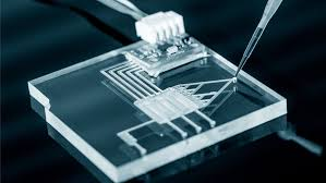 Lab On A Chip This One Cent Lab On A Chip Can Diagnose Cancer And Infections