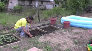 Diy Garden Small Cheap Garden Boxes Diy Youtube