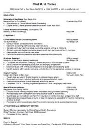 Mental Health Therapist Resume Examples A Good Resume Example