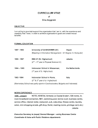 Objective In Resume Examples Letter Resume Directory