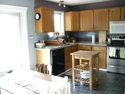 grey kitchen cabinets wall colour large size of kitchen kitchen colors with grey cabinets elegant grey