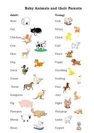 Forum | ______ Learn English | Fluent LandVocabulary: Baby Animals ...